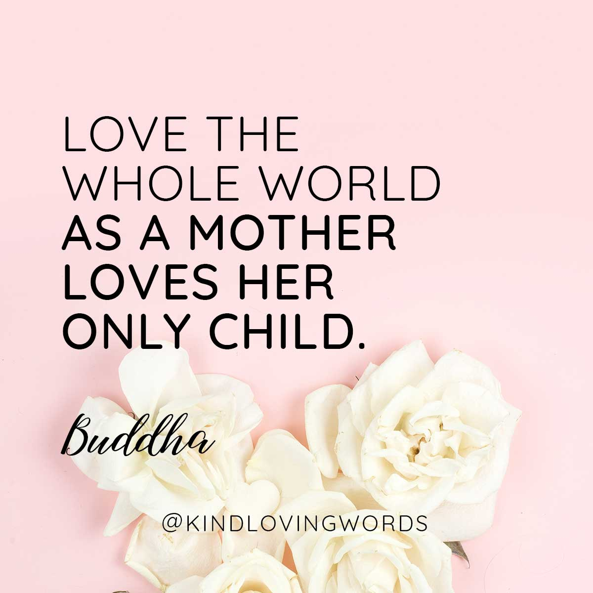 Love the wholeworld